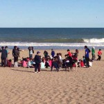 1115_P5 Gesell-dia 2-1