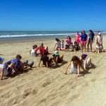 1115_P5 Gesell-dia 2-7